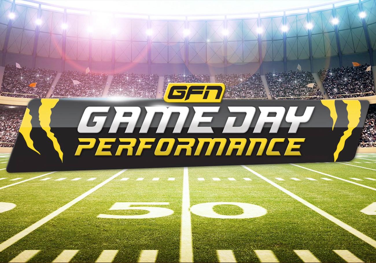 Portfolio-GFN-Performance